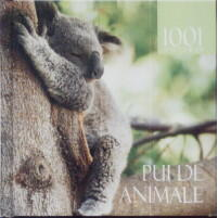 1001 de fotografii - Pui de animale ALL