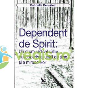 FOR YOU Dependent de spirit – Gabrielle Bernstein