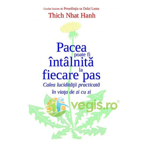 Pacea poate fi intalnita la fiecare pas - Thich Nhat Hanh thumbnail