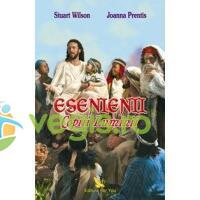 Esenienii, copiii luminii - Stuart Wilson, Joanna Prentis FOR YOU
