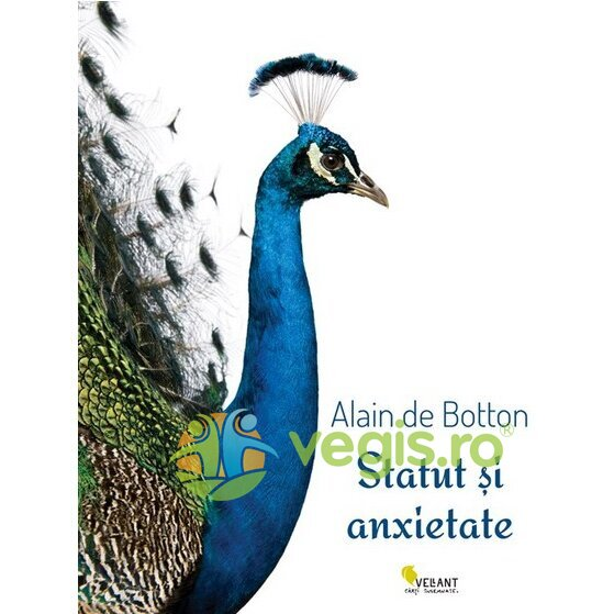 VELLANT Statut si anxietate – Alain De Botton