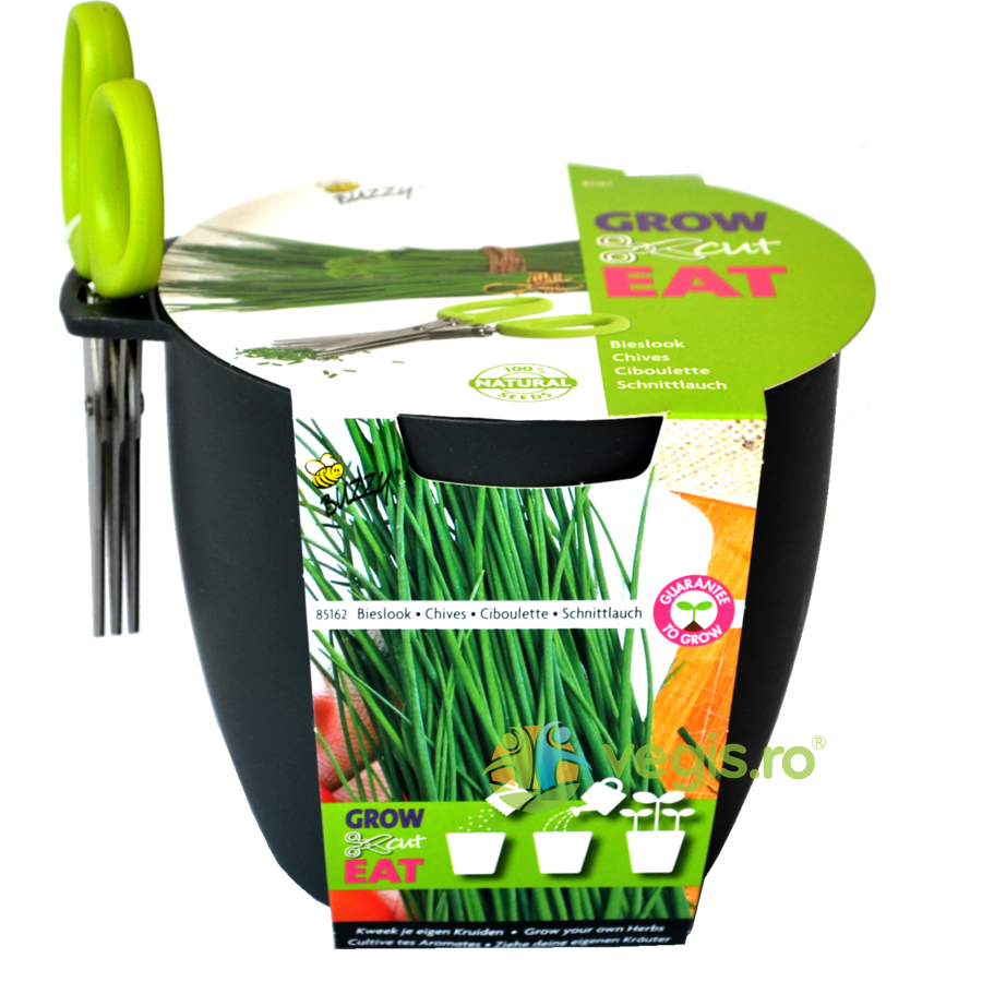 Buzzy Seeds Kit de Cultivat Grow,Cut&Eat Chives + Foarfeca – GRI INCHIS