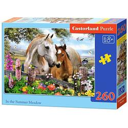 Puzzle 180 Castorland - In the Summer Meadow