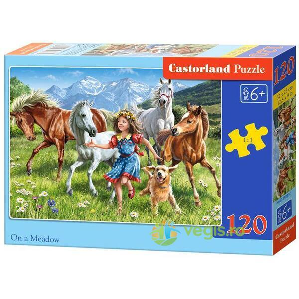 Puzzle 120 Castorland - On a Meadow