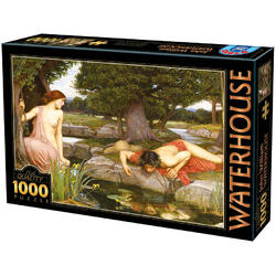 Puzzle 1000 John William Waterhouse - Echo and Narcissus D TOYS