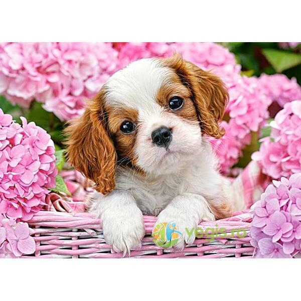 Puzzle 180 Castorland - Pup in pink flowers