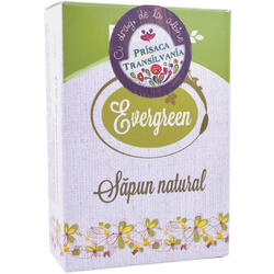 Sapun Natural Cu Pin Si Argila Verde (Evergreen) 100g PRISACA