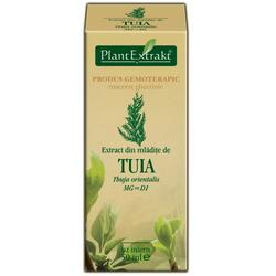 EXTRACT TUIA 50ML