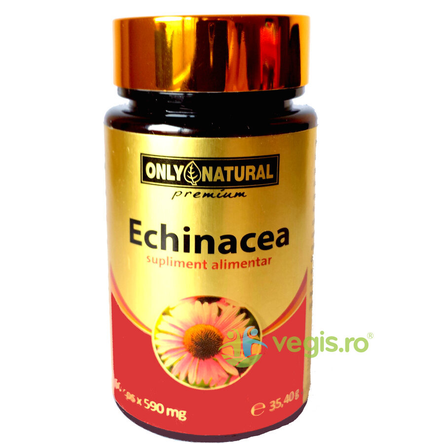 ONLY NATURAL Echinacea 60cps 590mg