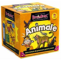BrainBox - Animale 8 ani+