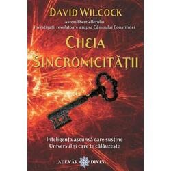Cheia Sincronicitatii - David Wilcock