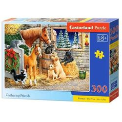 Puzzle 300. Gathering Friends CASTORLAND