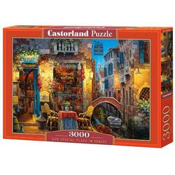 Puzzle 3000. Our Special Place in Venice CASTORLAND