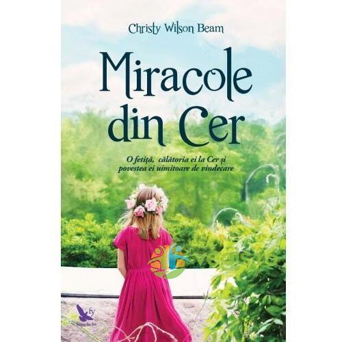 Miracole din cer - Christy Wilson Beam