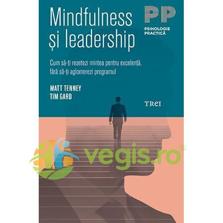 mindfulness si leaderschip - matt tenney, tim gard