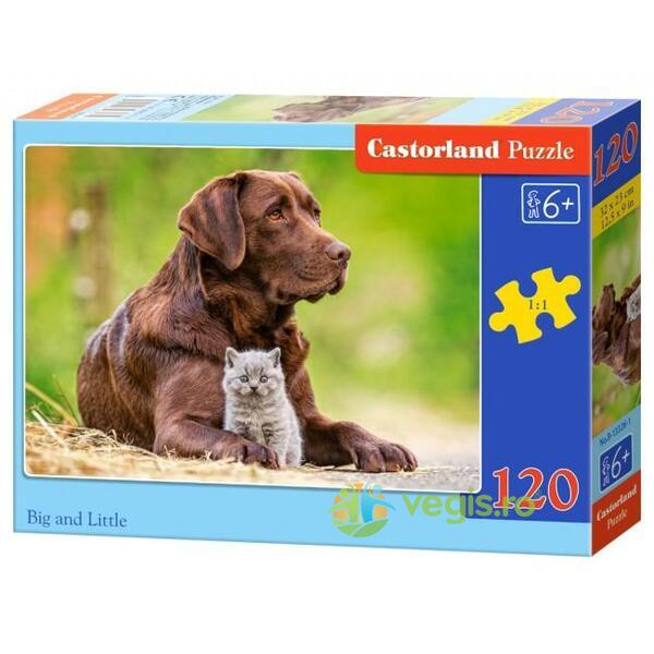 Puzzle 120. Big and Little CASTORLAND
