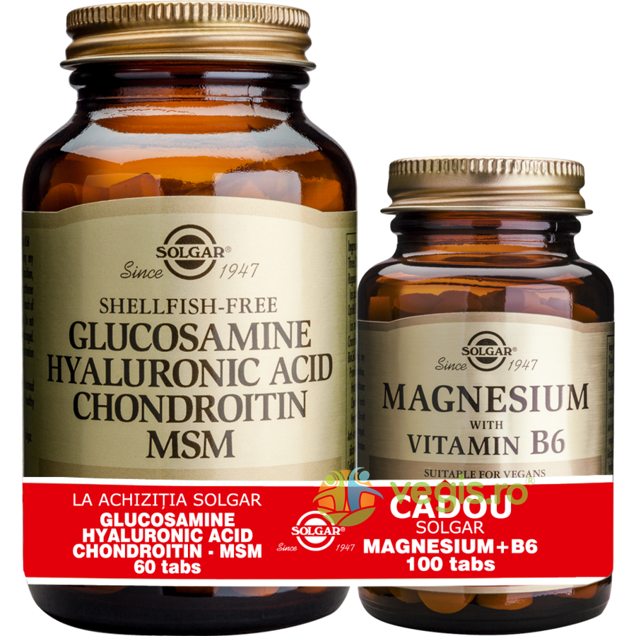 SOLGAR Glucosamine Hyaluronic Acid Chondroitin MSM 60tb (Glucozamina, acid hialuronic, condroitina si MSM) + Magnesium (Magneziu) cu B6 100 tablete Pachet 1+1 Cadou