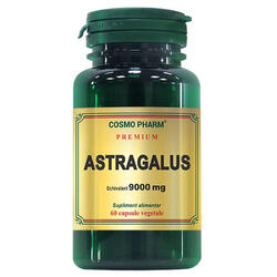 Astragalus Extract 450mg echivalent 9000mg 60cps Premium COSMOPHARM