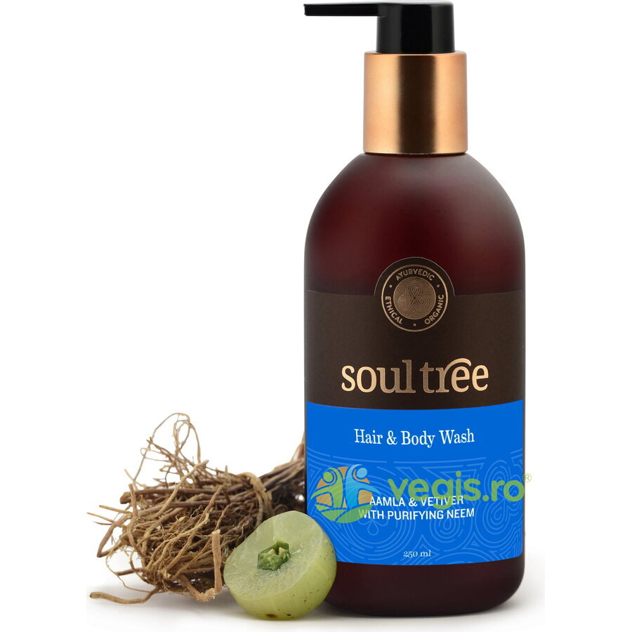 SOULTREE Sampon si Gel de Dus cu Amla, Vetiver si Neem 250ml
