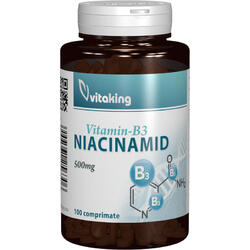 Vitamina B3 (Niacinamida) 500mg 100cpr VITAKING