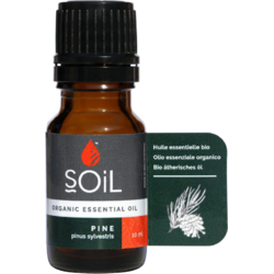 Ulei Esential de Pin Ecologic/Bio 10ml SOiL