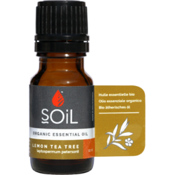 Ulei Esential de Arbore de Ceai Lamaios (Lemon Tea Tree) Ecologic/Bio 10ml SOiL