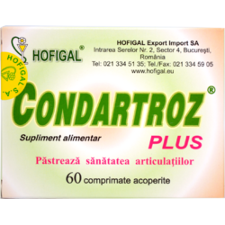 Condartroz Plus 60cpr HOFIGAL