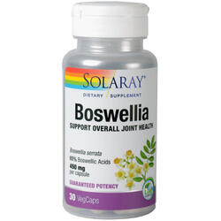 Boswellia (Tamaie) 450mg 30cps vegetale SOLARAY